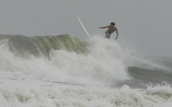 Folly_surfer